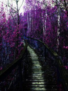 Unreal Scenery by arienrhod1