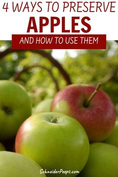Canning apples isn't the only way to preserve them, you can also dehydrate apples, freeze them and even use them in ferments. With apple season upon us, stock up on apples to make canned apple pie filling, applesauce, apple butter, apple chips and rings. Find all these recipes in this guide to preserving apples.  #preservingfood #apples #fromscratch #simpleliving Preserving Apples, Canning Apples, Preserving Food, Healthy Meals To Cook, No Cook Meals, Healthy Dinner Recipes, Dehydrated Apples, Canned Apple Pie Filling, Freezing Apples