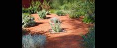 Design Category: Australian Native Garden – Taylor Cullity Lethlean - Botanic Gardens Adelaide