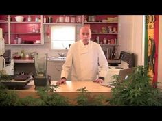 Making A Small Batch of Medicinal Grade Cannabis Oil / Revised Edition