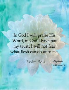 Psalm 56:4-I will praise the Word of God, in which I trust! I will not fear…