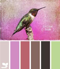 color hum