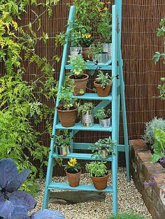 Ladders, One Step At A Time www.wisteria-avenue.co.uk
