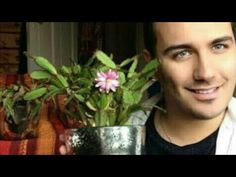 how to take care of the May flower how to make the May flower grow flower bloom October GAY Bloom, Youtube, Natural, Plants, Flower Of May, Window Boxes, Infant Room, Conch Fritters, Vases