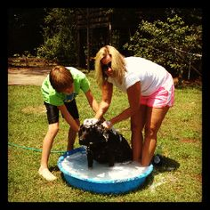 Hamish and his big sister amy at the do it yourself dog wash the lifestyle greenwithenvy dog wash solutioingenieria Images