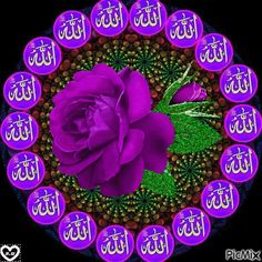 Allah s. Islamic Images, Islamic Messages, Islamic Pictures, Islamic Art, Allah In Arabic, Kaligrafi Allah, Beautiful Gif, Beautiful Roses, Islamic Calligraphy