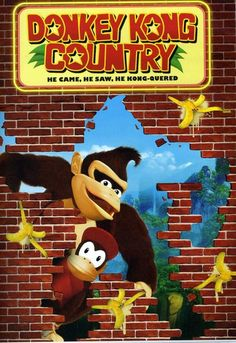 Donkey Kong Country DVD