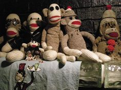 neat sock monkey collection