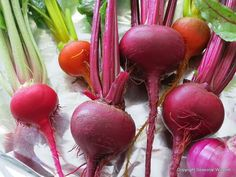 Beets picked straight from the garden.