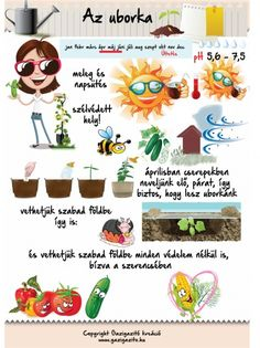 8 Tips To Get Your Kids Enjoy Home Gardening Medicinal Plants, Agriculture, Vegetable Garden, Beautiful Gardens, Diy For Kids, Gardening Tips, Outdoor Gardens, Garden Design, Home And Garden