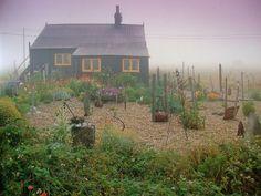 Derek Jarman's garden, Prospect Cottage, Dungeness.