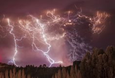 """Winner, Earth's Environments – """"Apocalypse"""" by Francisco Negroni 