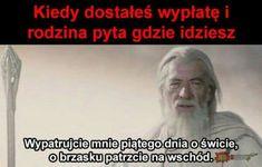 Polish Memes, Very Funny Memes, Smile Everyday, Life Humor, Edgy Memes, Lotr, Me Me Me Anime, Best Memes, The Hobbit