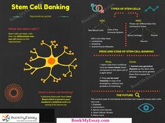 Through this Info-graphic students can read about the types stem of cell parts and they can score the high marks in #ScienceAssignment with help of BookMyEssay.  For more the details, visit here: https://www.bookmyessay.com/science-assignment/