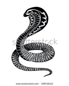 "For many people, snakes, bugs and other ""critters"" are repulsive but for many people they have an entirely different meaning altogether. Snake tattoos are often a personal expression that can represent many things but it . Cobra, Serpent, Snake Tattoo, Tribal Tattoos, Illustration, Tattoo Designs, Google Search, Gallery, Ideas"