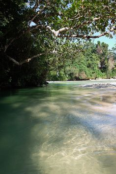 Frenchman's Cove near Port Antonio, Jamaica. Close by #HotelMockingBirdHill http://www.hotelmockingbirdhill.com/experiences/beaches-2/
