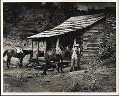 This is where I'm sleeping this summer while backpacking. Martin's Fork cabin Cumberland Gap Nat'l Park in KY/VA/TN
