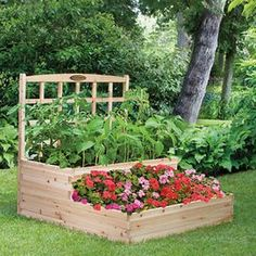 Product: Garden bed and trellis     Construction material: Cedar  Color: Natural    Features: Efficient way to grow a beautiful healthy gardenTrellis allows climbing plants to grow verticallyComes unfinished and ready to stain   Dimensions: 44 H x 48 W x 48 D