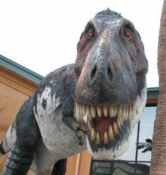 Rocky Mountain Dinosaur Resource Center