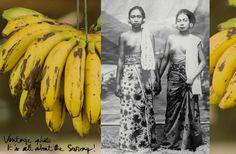 Bali / Vintage Photo, The Sarong