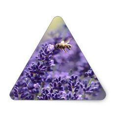 Spring Lavender with Bees Purple Floral Triangle Sticker - spring gifts beautiful diy spring time new year