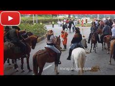 Cabalgata Armenia Quindio 2011, turismo por el eje cafetero mujeres Colombia 20 de 20.avi - YouTube