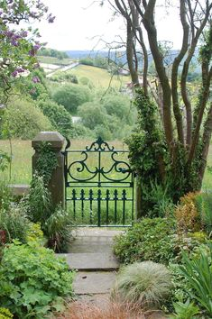 Lesley Jackson has a garden gate that opens onto a meadow. How utterly perfect is that!