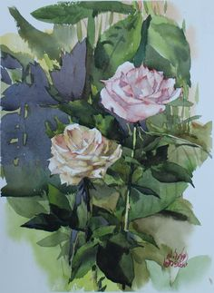 Watana Kreetong/Roses at Doi Saket Chiang Mai    Thailand 28x38cm