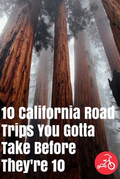 California is not only the most populous state in the country, it's the most geographically diverse. Hop in the car and you can drive to any of these spots and explore castles, wine country, majestic mountains, ski vacations, apple picking, desert delights and more. #california #roadtrips #vacation #familyroadtrip #familyfriendlyvacation
