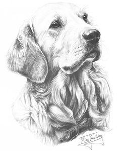 OPEN EDITION GRAPHITE PENCIL DOG PRINTS FINE ART GALLERY - Mike ...