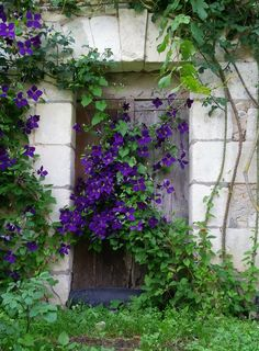 All sizes | La vieille porte, the old door ... (Explore) | Flickr - Photo Sharing!