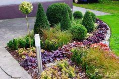 Metamorfozy ogrodowe - strona 83 - Forum ogrodnicze - Ogrodowisko