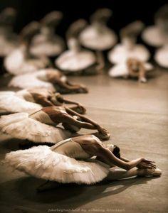 Swan Lake corps de ballet