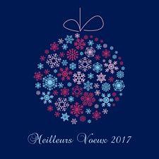 Vœux et flocons 2017, version bleue avec touches de rouge, rose et bleu ciel. Souhaitez des voeux raffinés aux note hivernales avec Popcarte.