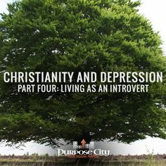 Eli continues his series on depression by looking at what it means to live in the Church as an introvert today: http://purposecity.com/?p=2805