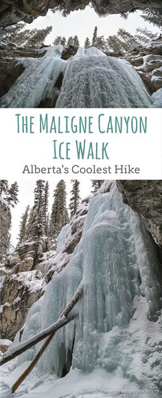 The Maligne Canyon Ice Walk- Alberta's Coolest Hike (Blog Post, travelyesplease.com) | #Canada #Alberta #Jasper #JasperNationalPark #NorthAmerica