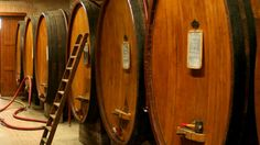 Rinaldi winery http://winedharma.com/it/cantina/cantina-rinaldi-giuseppe