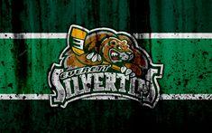 Download wallpapers Everett Silvertips, 4k, grunge, WHL, hockey, art, Canada, logo, stone texture, Western Hockey League