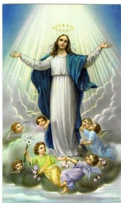 If the Assumptio means anything, it means a spiritual fact which can be formulated as the integration of the female principle into the Christian conception of the Godhead. ~Carl Jung, Letters Vol. I, Pages 566-568