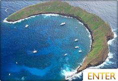 Molokini Crater  25 best things to do in Maui
