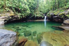 Le bassin Paradise - Chutes du Carbet