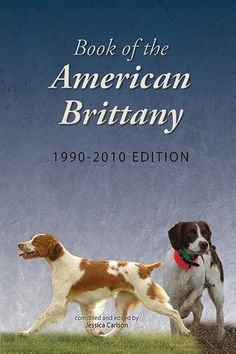 The Book of the American Brittany, 1990-2010 Edition is now available on the ABC web site. An invaluable source of reference and enjoyment for all Brittany breeders and enthusiasts. Expanding upon the previous works by Dr. Fred Z. White, Nicky Bissell, and Rheta Cartmell, this 320-page edition focuses on dogs and Brittany events between the years 1990-2010.