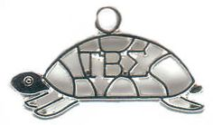Tau Beta turtle necklace!