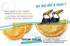 """Résultat de recherche d'images pour """"toucan toucan"""""""