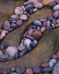 beach rocks or river rock, i love rocks. i'm just like my dad and grandfather.
