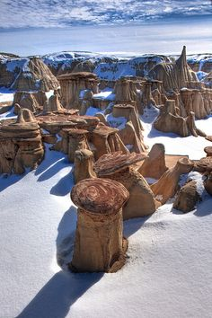 Cap rock plates of sandstone create hoodoo's in snow, Ash Paw Canyon, New Mexico, USA.