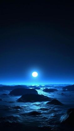 Moonlit Sea Reef