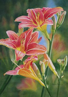 Vintage Red Orange Lilies by Sharon Freeman  http://fineartamerica.com/featured/vintage-red-orange-lilies-sharon-freeman.html  Art Prints, Canvas Prints, Greeting Cards