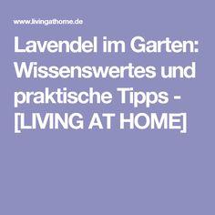 buchsbaum schneiden garten balkon pinterest garten buchsbaum und baum. Black Bedroom Furniture Sets. Home Design Ideas
