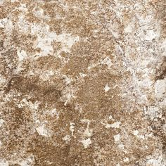 Shop SenSa Brown Persa Granite Kitchen Countertop Sample at Lowes.com